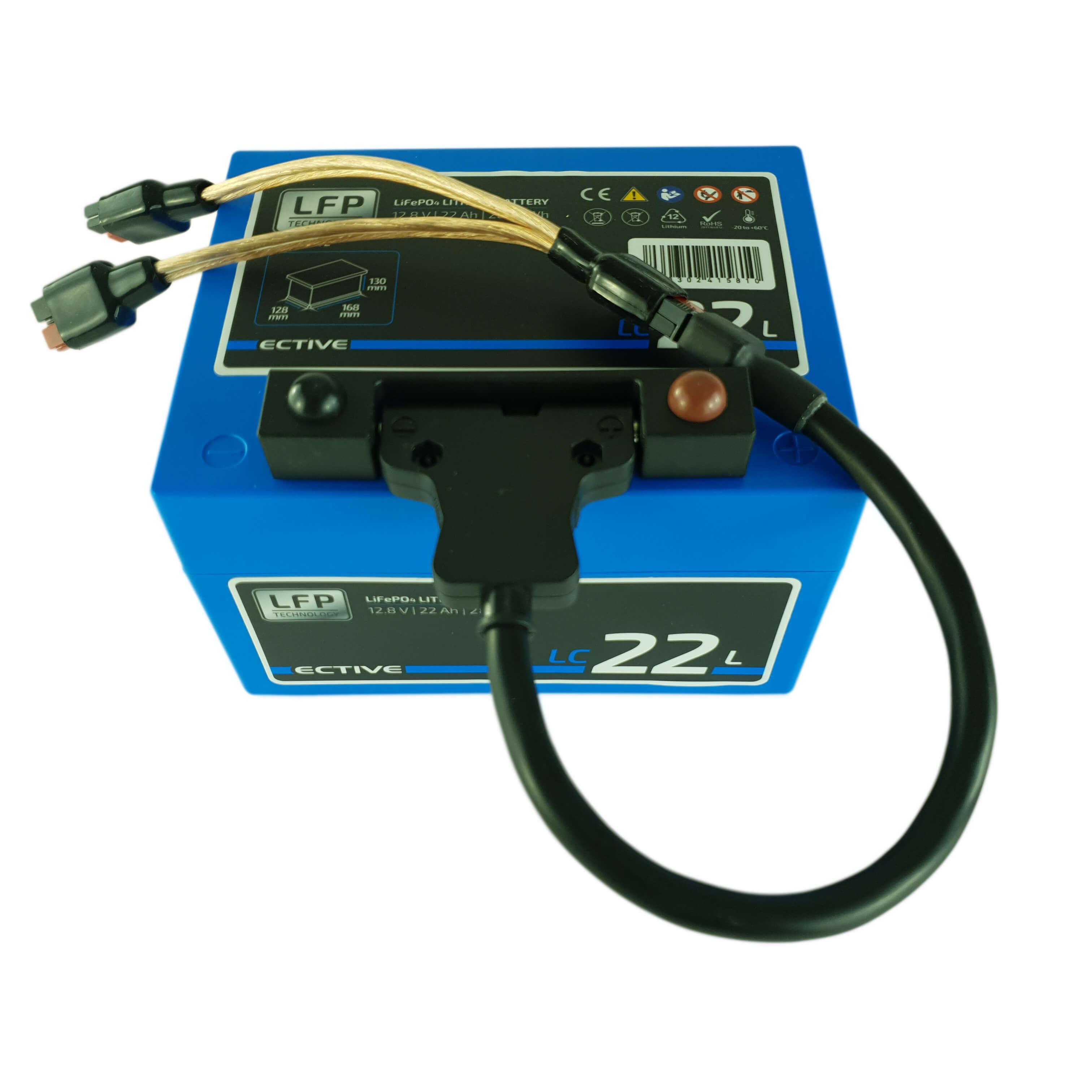 In diesem Akku kann die mit dem Oekotrainer erzeugte Energie gespeichert werden.